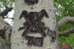 Tool_symbol