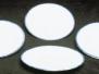 Rounded Dinner Plates